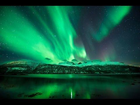 Norwegian Dream – The Green Children
