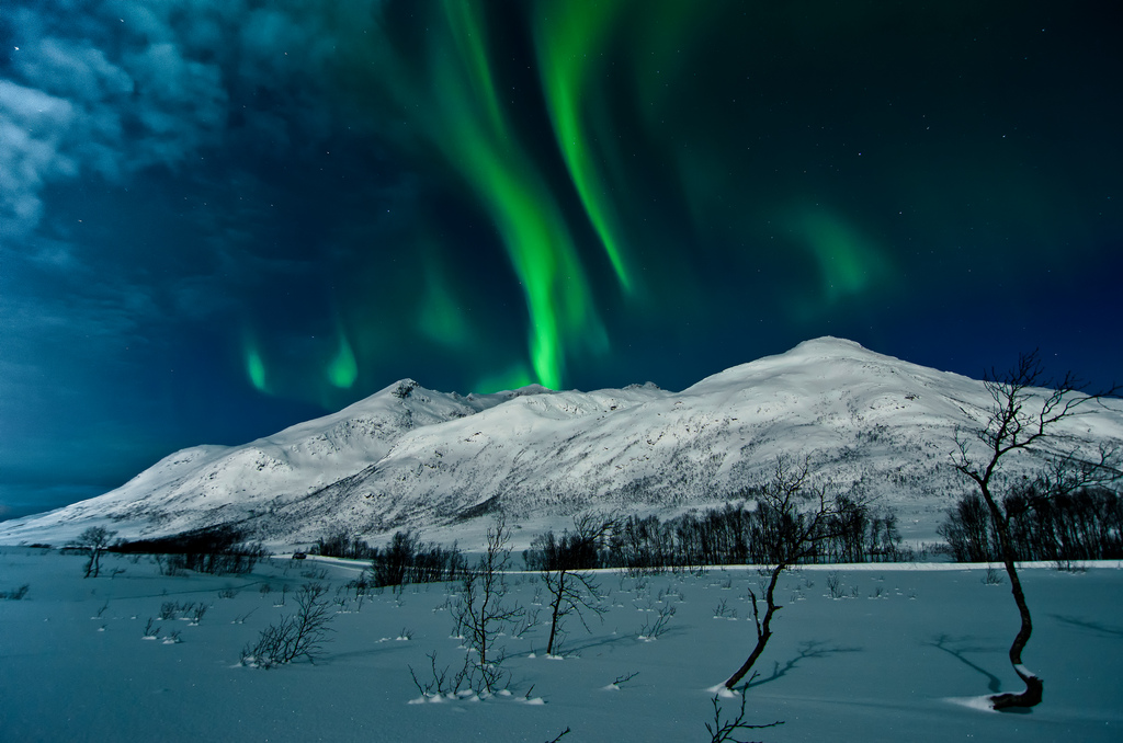 Photo: Andi Gentsch | Aurora Borealis, Northern lights in Tromsø, Norway