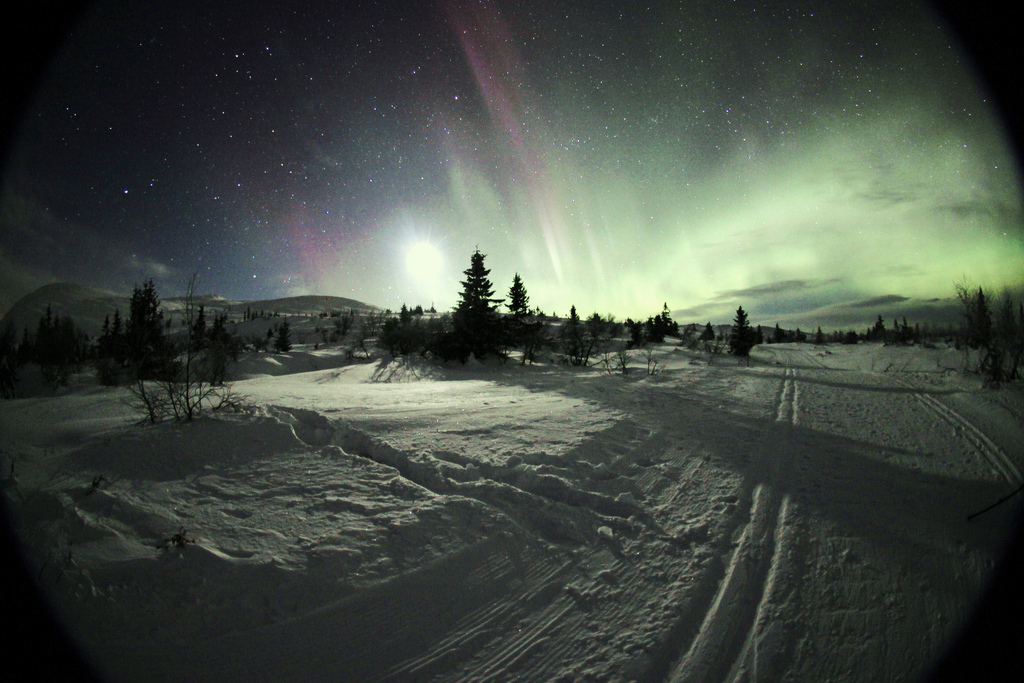 Photo: Timothy Boocock | Trysil Aurora Borealis . Trysil is a winter wonderland for stargazing and Night time Photography ,Its a shame that some people will never have this experience and that's because of light pollution in main cities around the worId